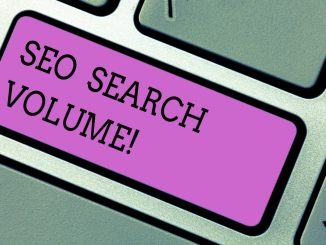 SEO search volume